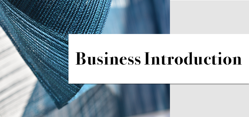Business Introduction